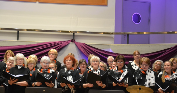 Met City Orkest 12-11-2017
